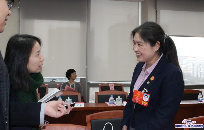CTEI记者采访两会代表